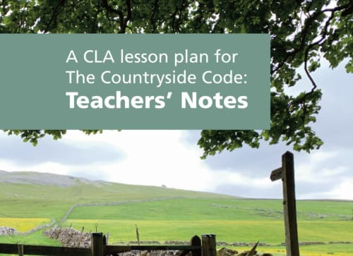 Countryside Code Lesson Plan