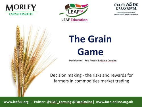 Business Studies Grain Trading Game