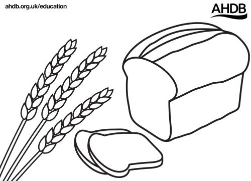 Grain art templates