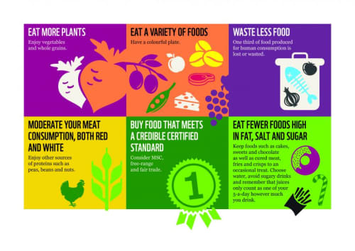 Sustainable Diets for UK adolescents
