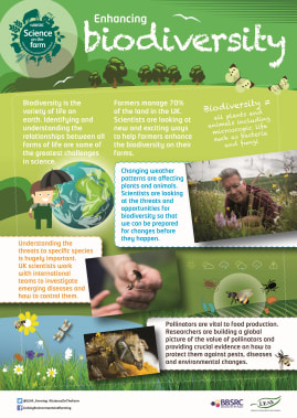BBSRC Science on the Farm poster - BIODIVERSITY