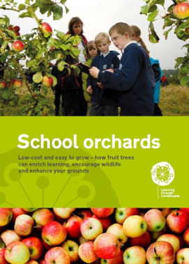 School grounds orchards
