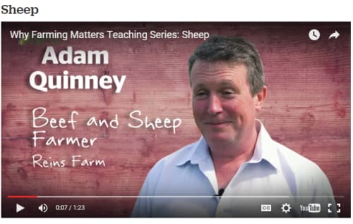 Why Farming Matters sheep video