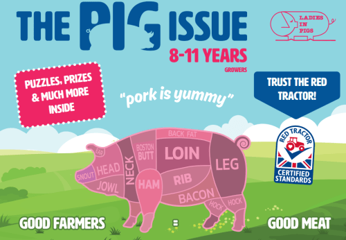 The 2020 Pig Issue children's activity book