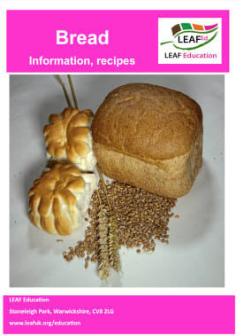 Bread - information, recipes and resources - home educator version