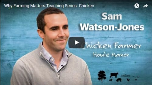Why Farming Matters chicken farming video
