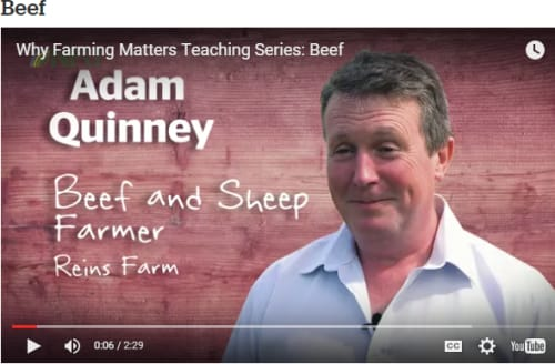 Why Farming Matters beef farming video
