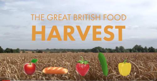 Harvest video