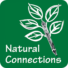 The Natural Connections Demonstration Project, 2012-2016 - Final Report (NECR215)