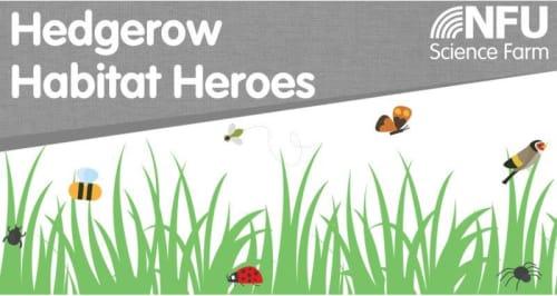 Hedgerow Habitat Heroes
