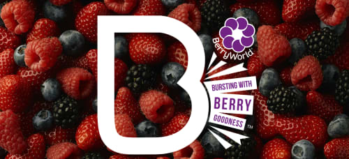 Beautiful Berry Recipes