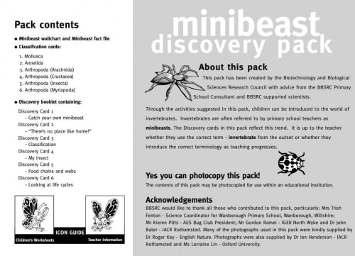 Minibeast discovery pack