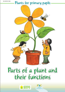 Plants for Primary Pupils: Parts of the plant and their functions