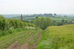 Rectory Farm (Market Harborough)