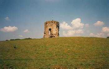 Knepp Castle Estate