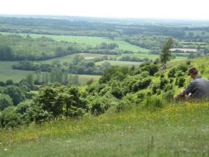 Wye Downs National Nature Reserve