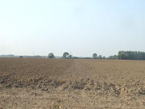 Pillmouth Farm