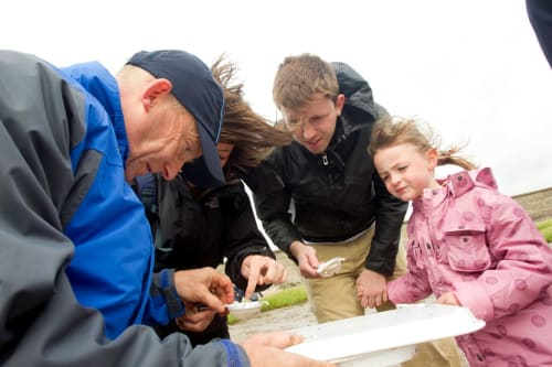 RSPB Ribble Discovery Centre School Visits