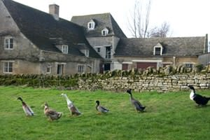 Sacrewell Farm & Country Centre