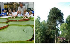 Durham University Botanic Gardens