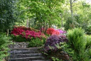 Garden Rosemoor