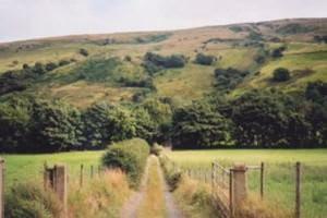 Ulster Wildlife Trust