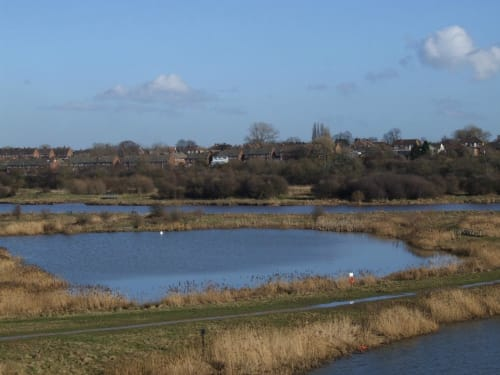 Tees Valley Wildlife Trust - Bowesfield Nature Reserve