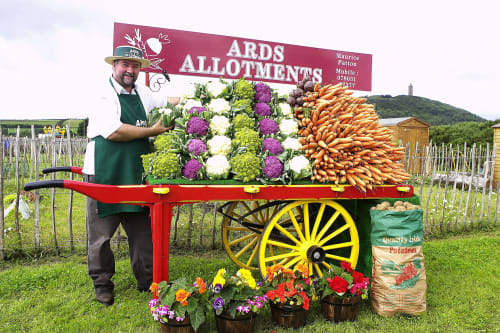 Ards Allotments