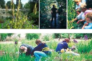 The University of Oxford Botanic Garden and Harcourt Arboretum
