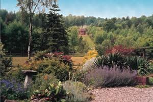Bodenham Arboretum & Earth Centre