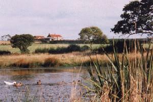 Kleasbeck Hill Farm