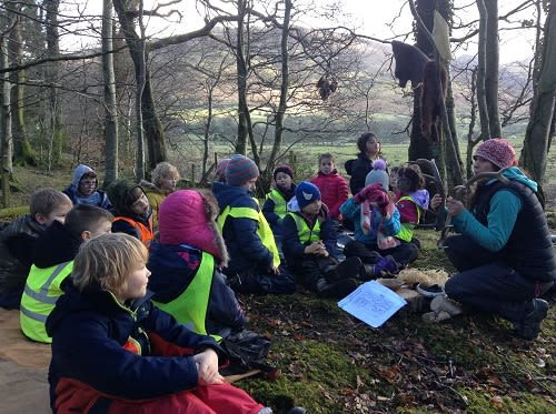 RFS Teaching Trees @ Mire House