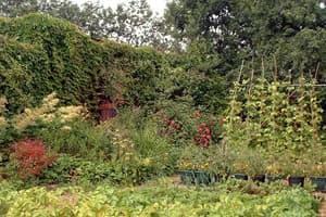 Redborne School Farm