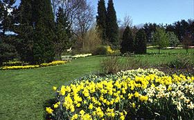 Garden Harlow Carr