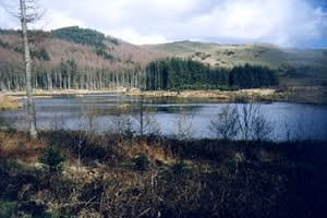 Bwlch Nant yr Arian Forest Visitor Centre