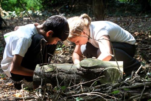 Sutton Courtenay Environmental Education Centre
