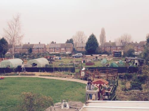 Olive Branch Community Garden