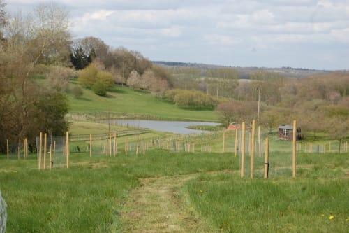St Crispins Farm