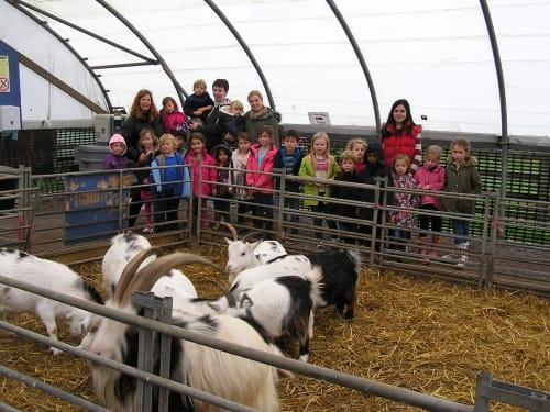 Hall Hill Farm