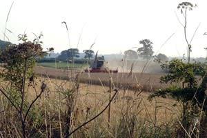 Midloe Grange Farm