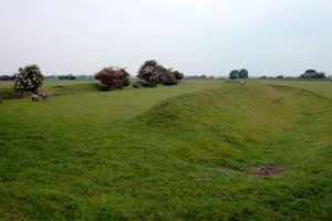 Stonea Farm