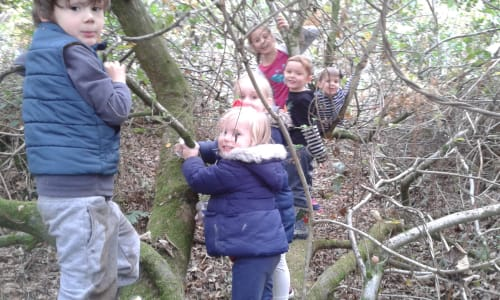 Newlands Corner with Surrey Wildlife Trust: Wild Families