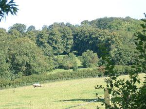 Hubbards Hills Farm