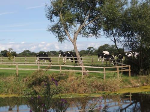 Humblescough Farm.