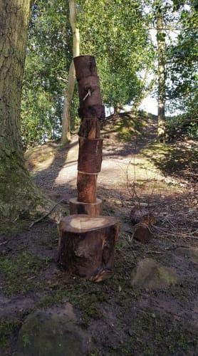 RFS Teaching Trees @ Woodchester
