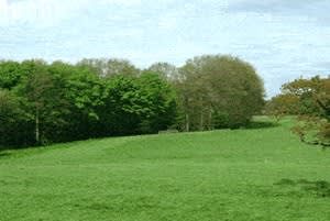 Hurst Hall Farm