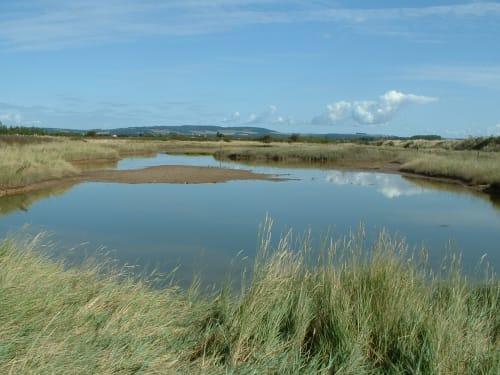 Cobnor Cottage Nature Reserve