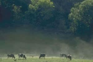 West Gowbusk Farm