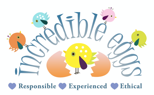 Incredible Eggs   Teaching Resources   Countryside Classroom