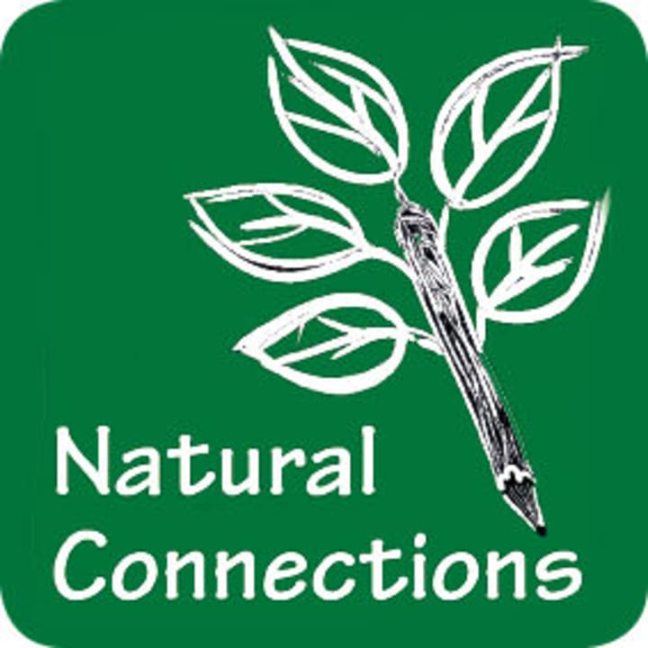 Natural Connections Consultancy